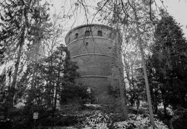 Volunteer Park water tower