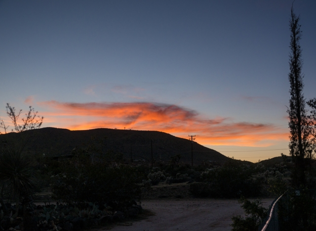 postcard from Yucca Valley